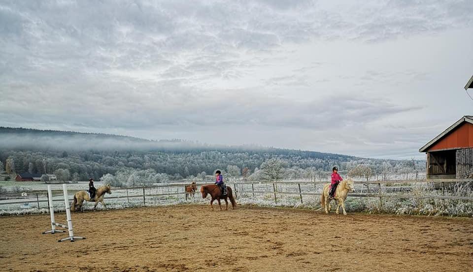 Ridskoleelever i paddocken rider en frostig dag.